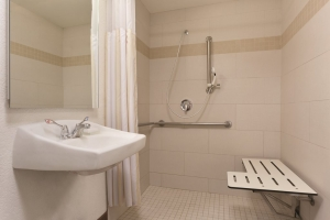 Hilton Garden Inn Anaheim Garden Grove - Bathroom - Roll In - 1021815